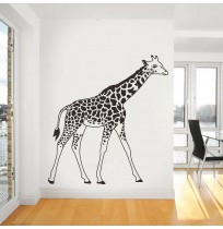 Wild Animals Giraffe